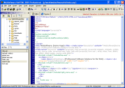 A Full IDE Shot of HotHTML 2001 Professional